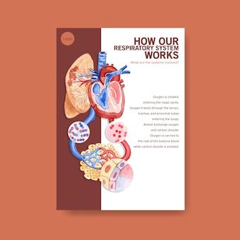 Información sobre la anatomía del sistema respiratorio y la comprensión de un sistema esencial.