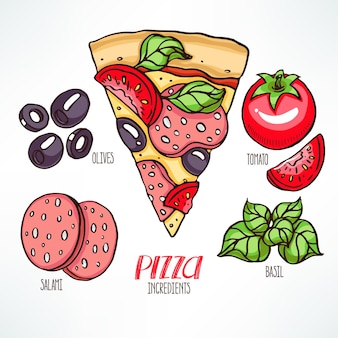 Ingredientes de pizza. pedazo de pizza con salami y albahaca. ilustración dibujada a mano
