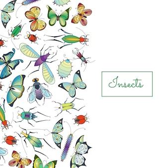 Insectos dibujados a mano con lugar para ilustración de texto