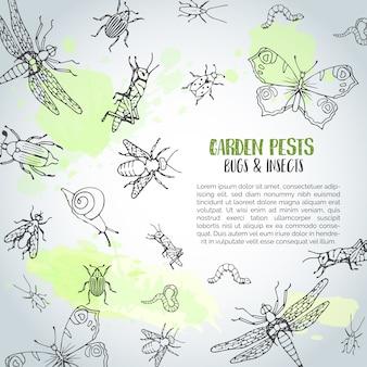 Insectos e insectos de fondo dibujado a mano