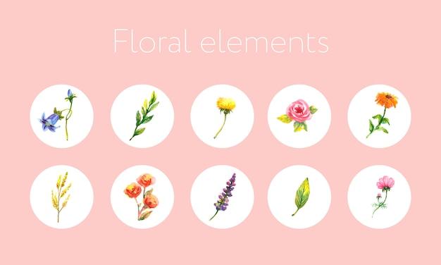 Insignias de venta coloridas y florales