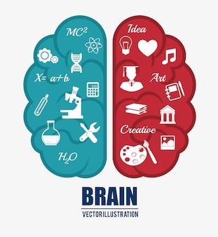 Inteligencia del cerebro humano.