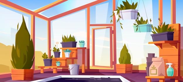 Interior de invernadero con plantas en macetas en los estantes. jardín de invierno vacío, invernadero con paredes de vidrio, ventanas, techo y piso de piedra, lugar para el cultivo de flores, vista interior. ilustración de dibujos animados
