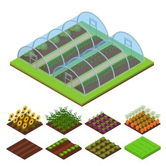 Invernadero y conjunto de piezas vista isométrica conservatorio hortícola para plantas, vegetales y flores ilustración vectorial
