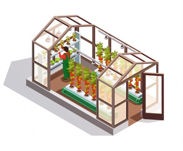 Invernadero isométrico con paredes de vidrio