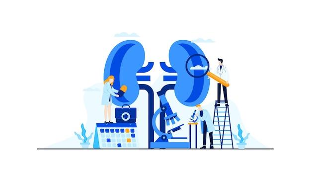 Investigación del médico de ilustración plana de enfermedad renal para el diseño de concepto de tratamiento