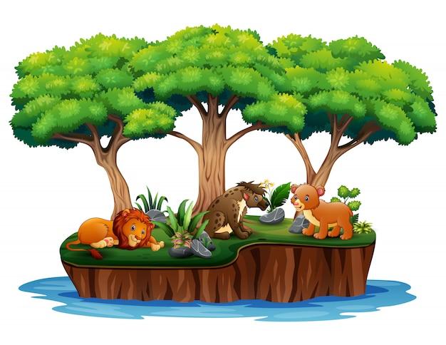 Isla de dibujos animados naturaleza con animales salvajes