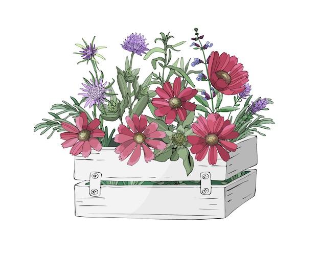 Jardín caja blanca de madera con flores frescas y hierbas para cocinar