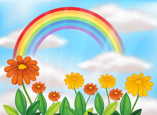 Jardín de flores y hermoso arco iris