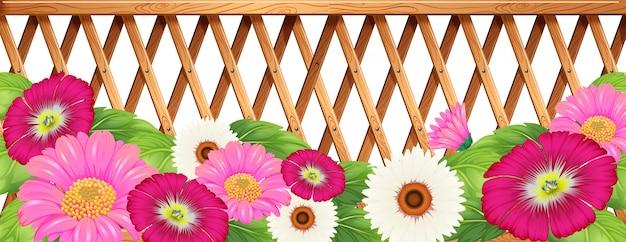 Un jardín de flores con una valla