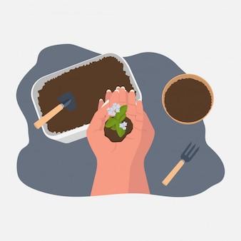 Jardinería moderna mínima, ilustración de plantación, planta en manos, maceta y herramientas
