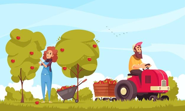 Jardinería de personajes humanos con tractor durante la cosecha de manzanas en dibujos animados de fondo de cielo azul