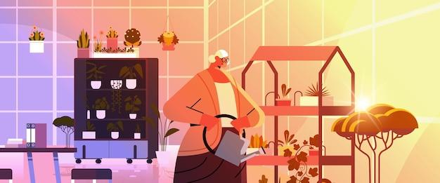 Jardinero de mujer mayor con regadera cuidando plantas en macetas en el jardín de su casa, sala de estar u oficina, ilustración de vector de retrato horizontal interior