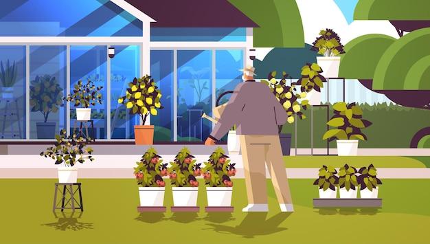 Jardinero senior con regadera cuidando de plantas en macetas en el invernadero del patio trasero o en el jardín de su casa