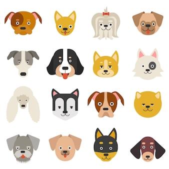 Jefes de mascotas caseras