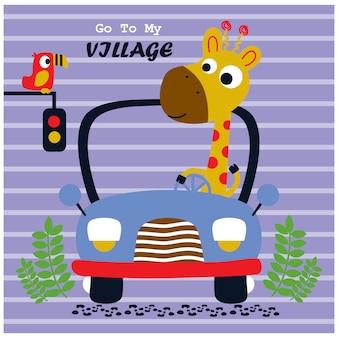 Jirafa conduciendo un coche, divertidos dibujos animados de animales, ilustración vectorial