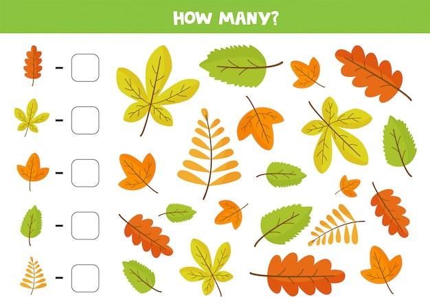 Juego de contar con lindas hojas de otoño coloridas