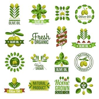 Juego de etiquetas de aceite de oliva orgánico natural