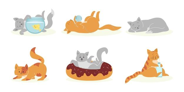 Juego de gatos juguetones grises y naranjas