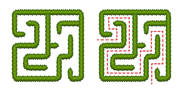 Juego de lógica educativa bush labyrinth para niños. encuentra el camino correcto. laberinto cuadrado simple aislado sobre fondo blanco. con la solucion. ilustración vectorial