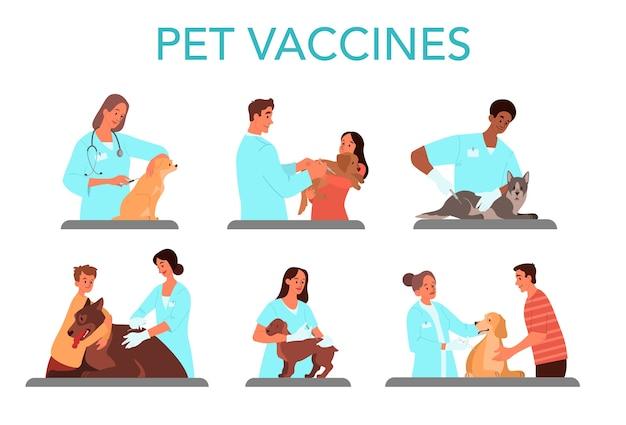 Juego de vacunación para mascotas. médico veterinario haciendo una inyección de vacuna