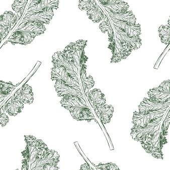 Kale vector de patrones sin fisuras. dibujar a mano dibujo vectorial.
