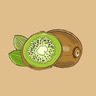 Kiwi en estilo vintage. ilustración vectorial de color