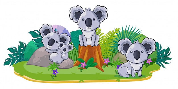 Koalas juegan juntos en el jardín.