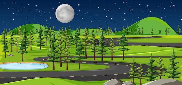 Largo camino en el paisaje de la naturaleza en la escena nocturna.