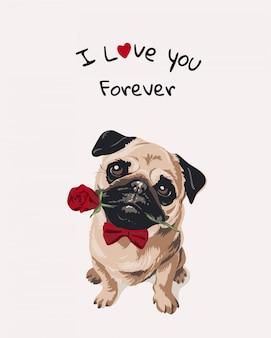 Lema de amor con perro pug de dibujos animados en pajarita con rosa en la boca ilustración