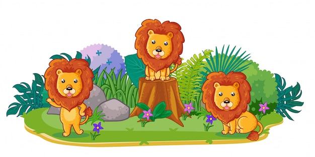 Los leones juegan juntos en el jardín.