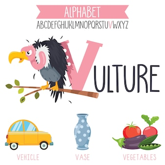 Letra del alfabeto ilustrada y objetos de dibujos animados