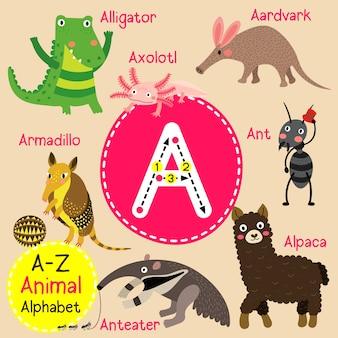 Letra a alfabeto zoológico