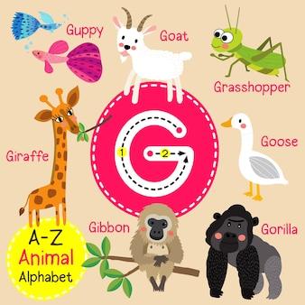 Letra g zoológico alfabeto