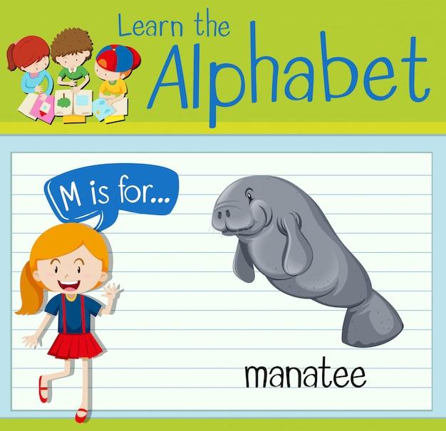 La letra m de la flashcard es para el manatí