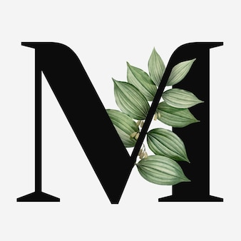 Letra mayúscula botánica m