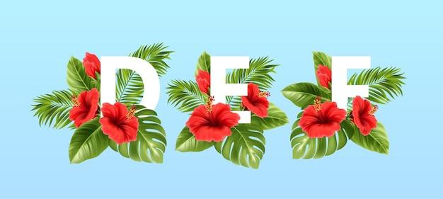 Letras abc rodeadas de hojas tropicales de verano y flores de hibisco rojo