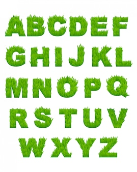 Letras del alfabeto de hierba verde