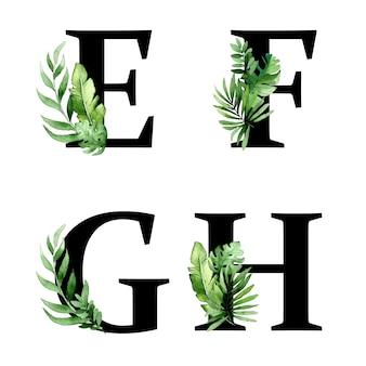 Letras del alfabeto con hojas verdes tropicales