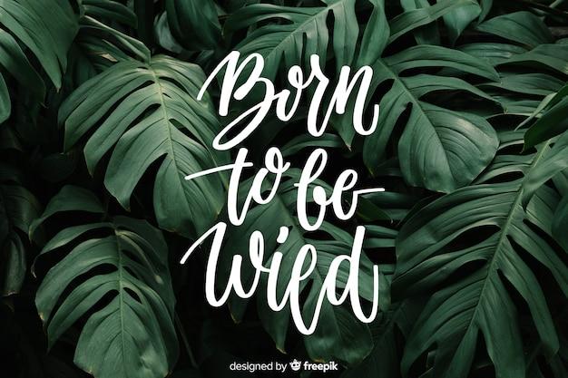 Letras de motivación en el fondo de la naturaleza