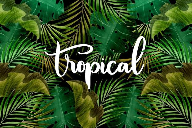 Letras de palabras tropicales y hojas
