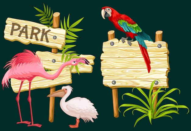 Letrero de madera o letreros, pájaros exóticos y hojas verdes.
