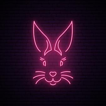 Letrero de neón de conejo.