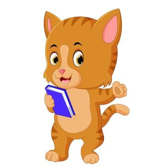 Libro de celebración de gato