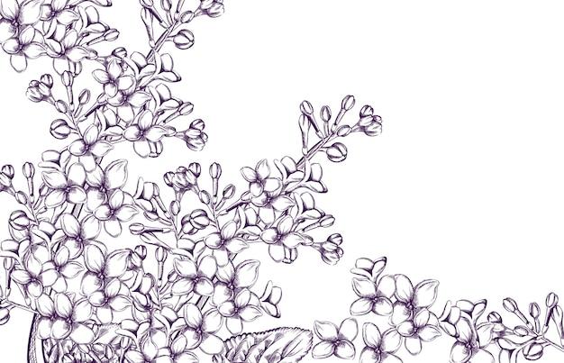 Lila flores de línea de arte.