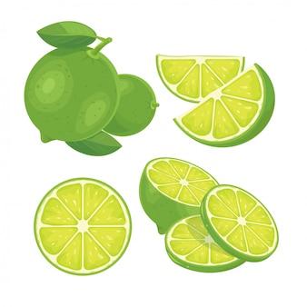 Limón verde fresco aislado