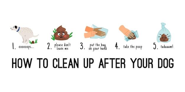 Limpieza de caca de perro. caca de perros recoger en infografías de pasos de bolsa, ilustración de dibujos animados de limpieza de basura de inodoro de mascotas