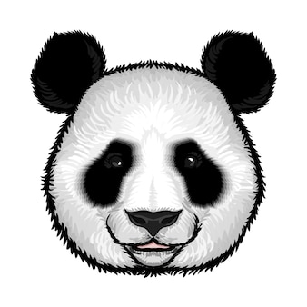 Linda cara de panda esponjoso