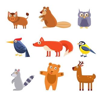 Linda colección de animales del bosque salvaje