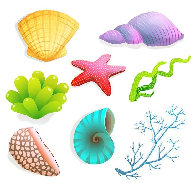Linda colección de conchas y corales y estrellas de mar